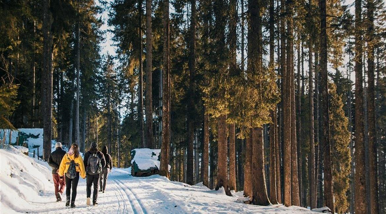 Randonner en hiver