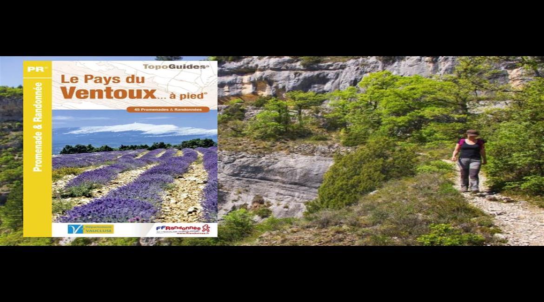 Les gorges de la Nesque dans le Vaucluse